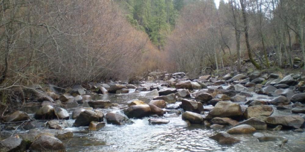 The scenic beauty of Deer Creek – American Rivers