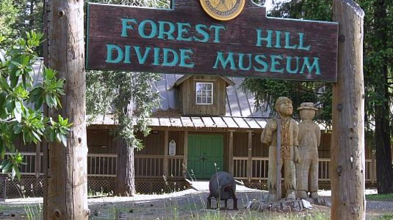 Forest Hill Divide Museum and Chainsaw Carvings – Debbie Griffin