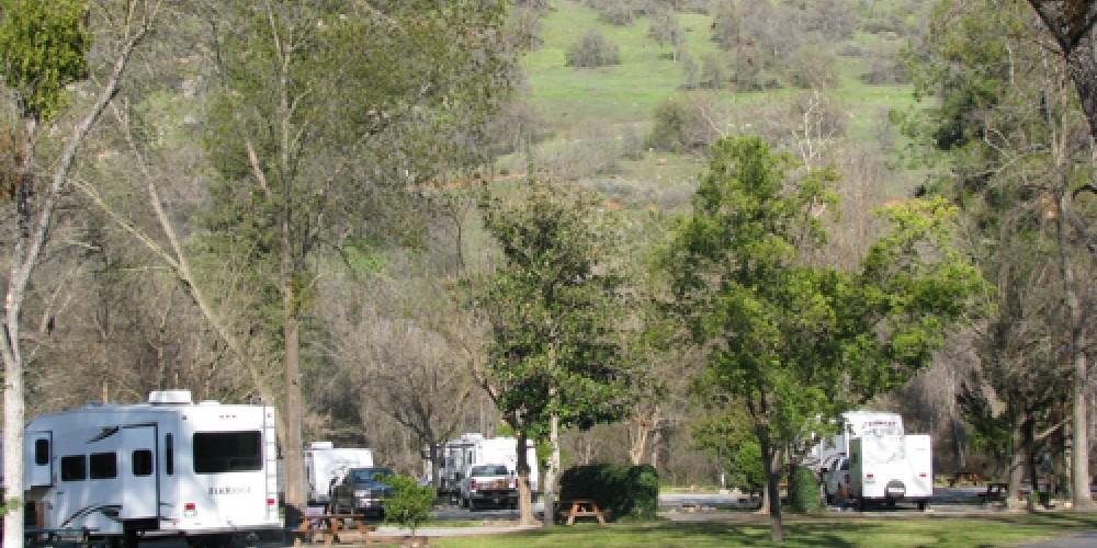 Camping under the shade trees – Jana Botkin