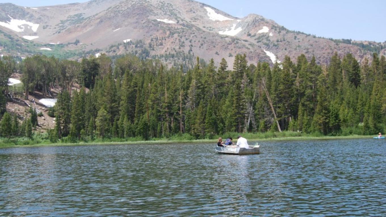 Fisherman on the lake – Sarah McCahill