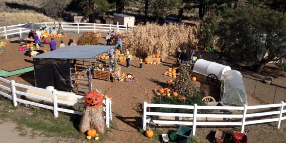 Lil Meg's Pumpkin Patch - Open every weekend in October, with fun activities for the kids and gourds aplenty. – Lil Meg's Pumpkin Patch