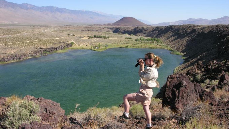 Birding Overlook at Little Lake