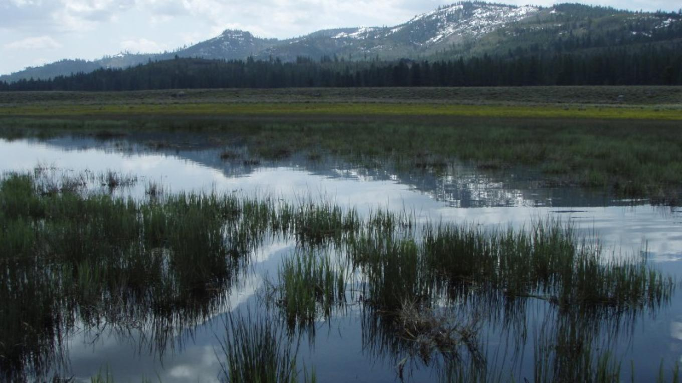Red Clover Valley is just one of the many watershed projects Plumas Corporation has supported on behalf of the Feather River Coordinated Resource Management group. – Kara Rockett-Arsenault