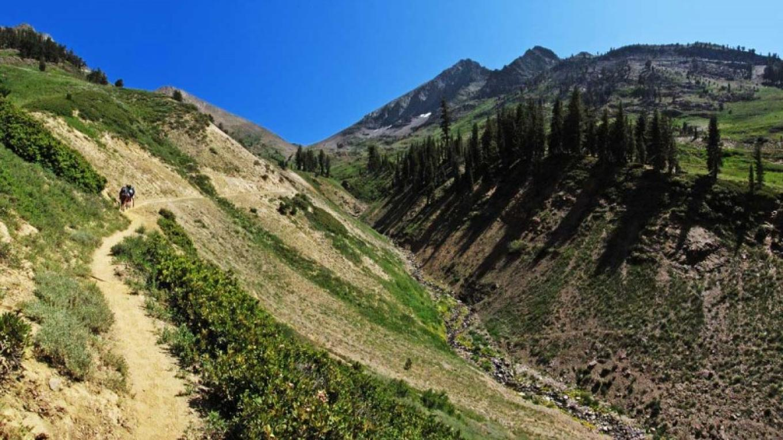 Franklin Pass trail climbs toward Farewell Gap. – NPS/Rick Cain