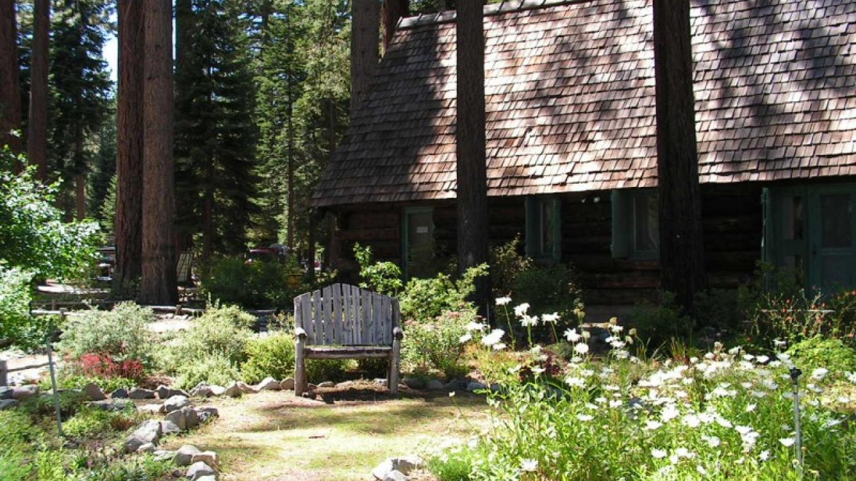 Baldwin Estate garden – Robin Shriver