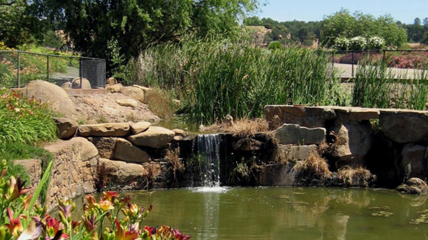 The pond and waterfall at the farm. – Leslie Sellman -Sant