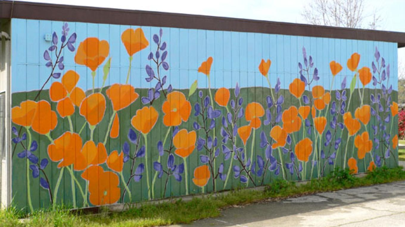 California Poppies and Lupines. Master artist Wendy McKellar. Located at Three Rivers Union School. – Nadi Spencer