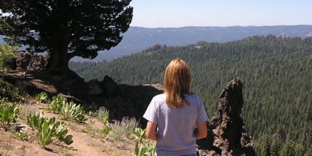 Geologic formations resembling 'gargoyles' line the trail