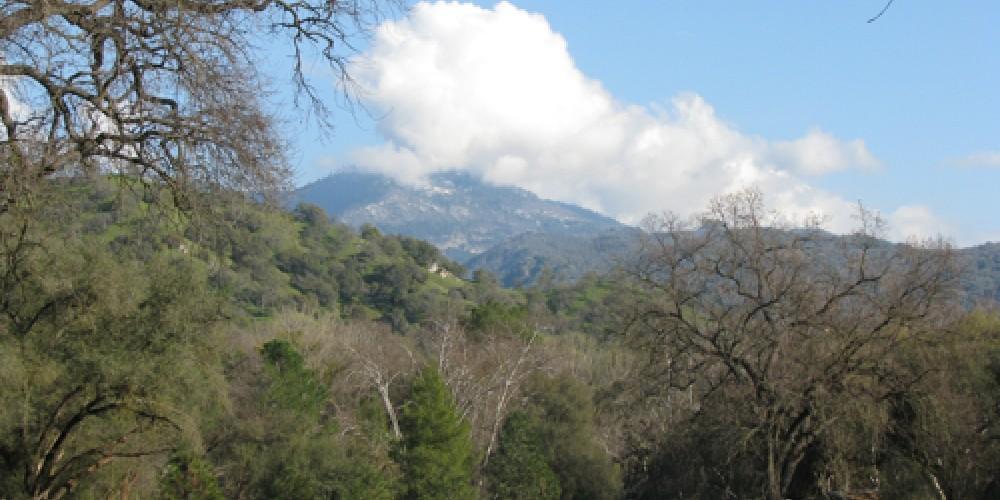 View of Case Mountain from Oak Meadow – Jana Botkin