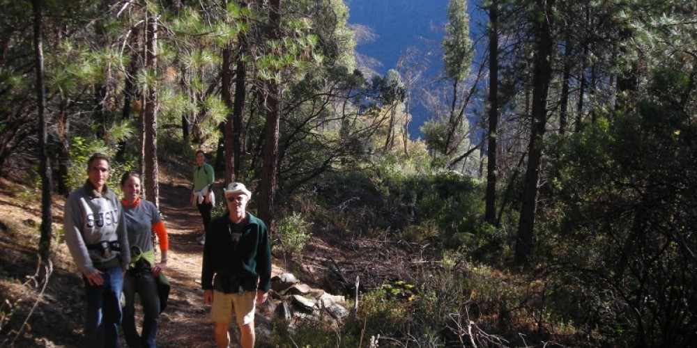 View along Stevens Trail (Colfax side) before trail opens into North Fork American River Canyon – Jay Shuttleworth