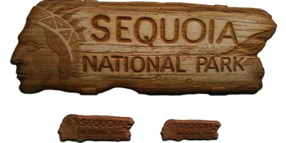 Sequoia National Park Souvenirs – Rick Fraser