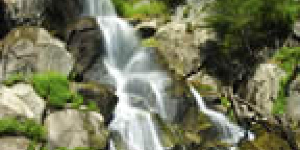 Grizzly Falls, King Canyon Scenic Byway – USDA FS