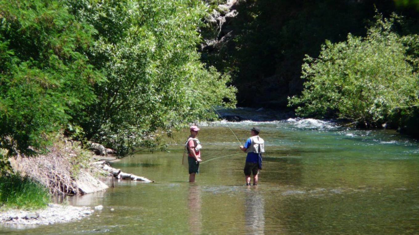 Trout fishing in the Downie River – Mike or Nancy Carnahan