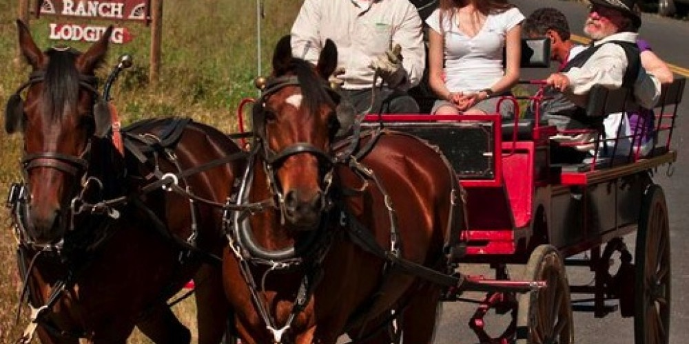 Wagon ride fun at Smith Station ribbon cutting & Big Creek Meadow Ranch – Al Golub