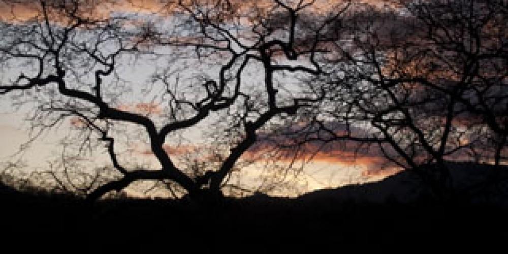Spirit Hill Sunset, 2009 – Shirley A. Blair Keller