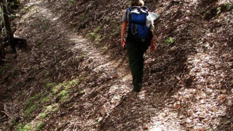 Ladybug Trail near Bone Hill – NPS