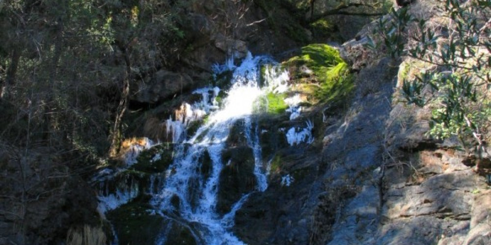 Codfish Falls – Placer Land Trust staff