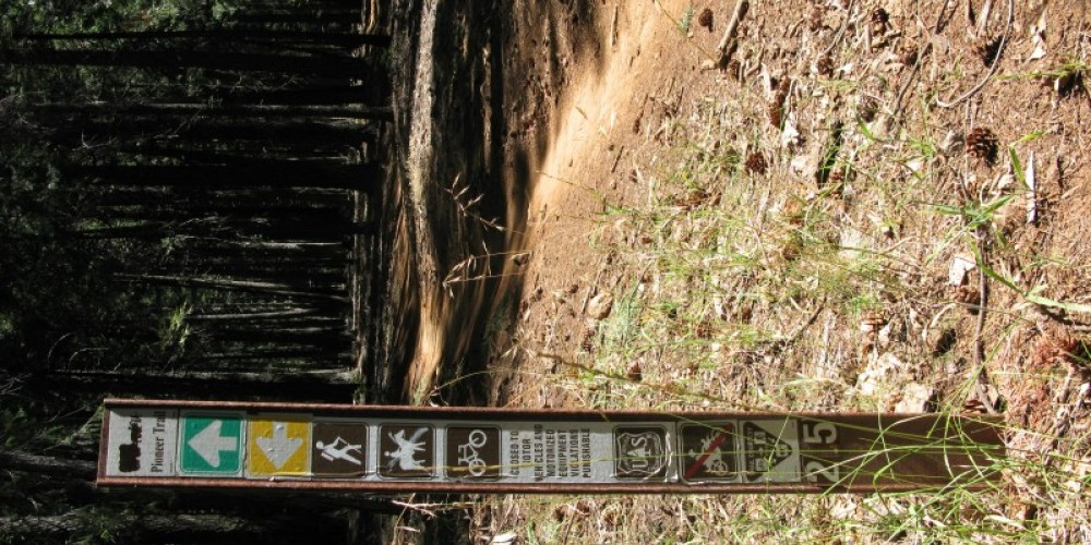 Pioneer Trail follows historic Emigrant Trail-Nevada City route along Hwy 20 – Linda Chaplin