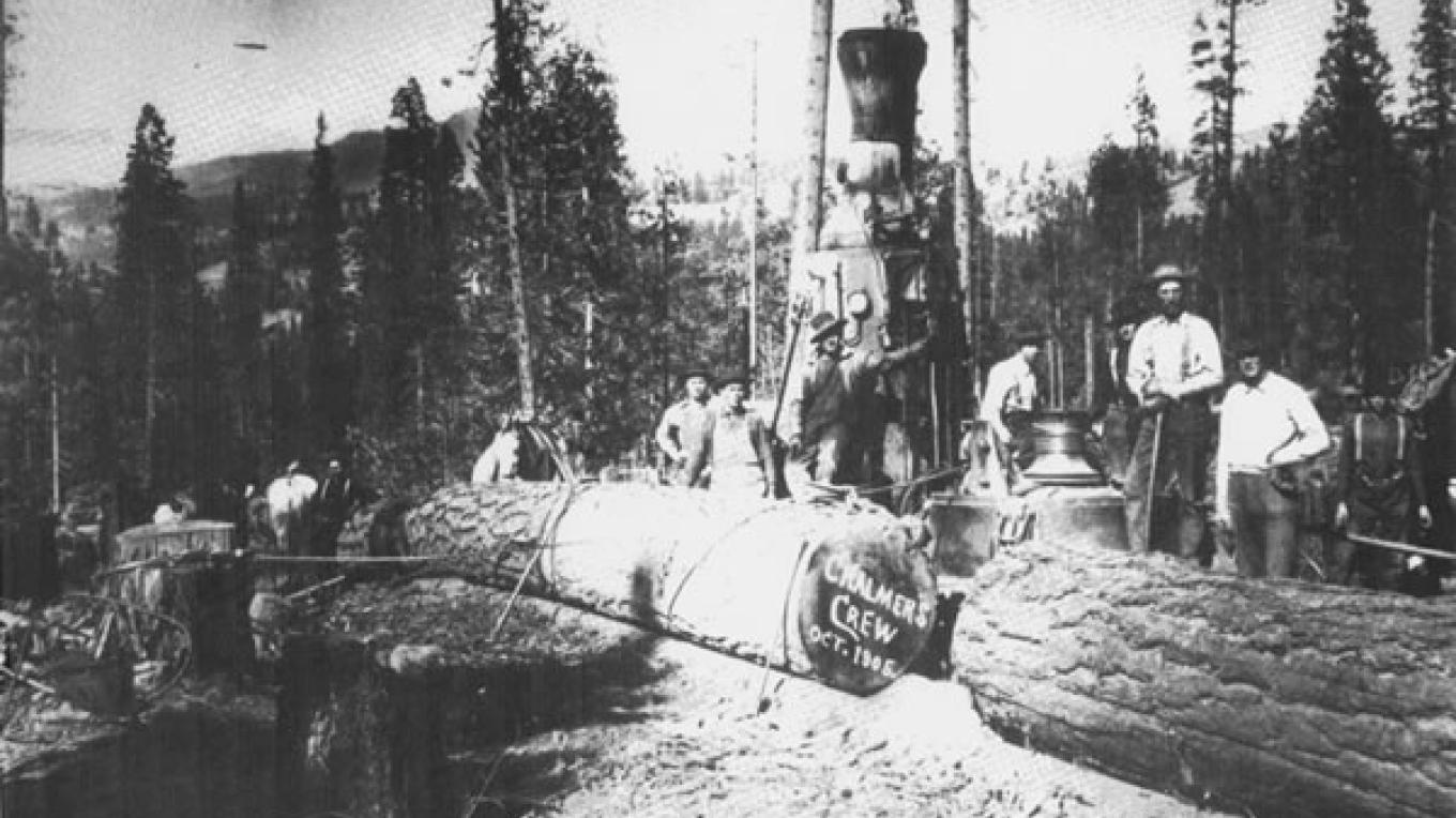 Logging operation near Loyalton 1906 – unknown