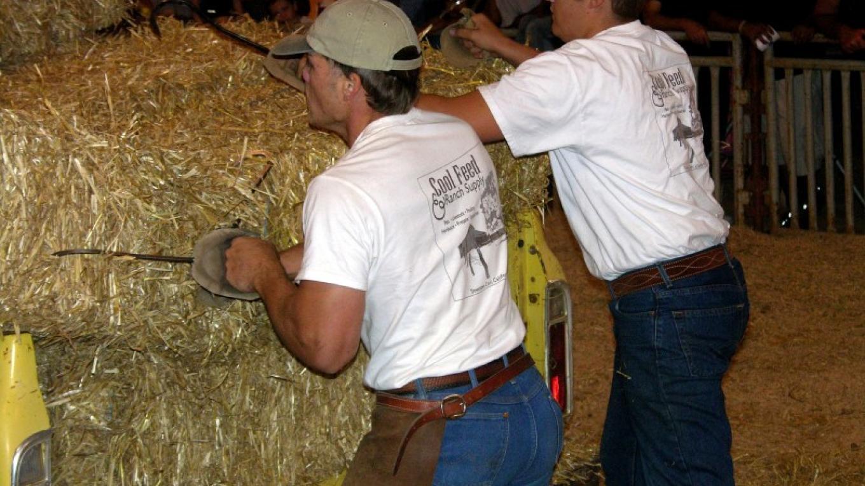 Hay Bucking – Suzanne Wright