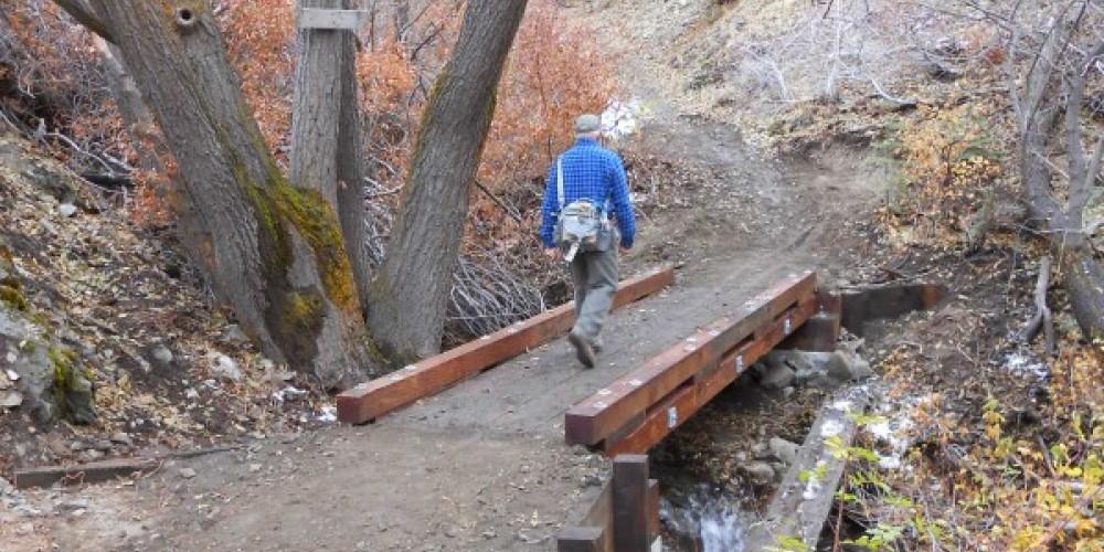 Sierra Canyon Trail/Genoa Loop – Carson Valley Trails Association