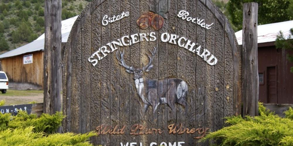 Stringer's Orchard – Lorissa Soriano