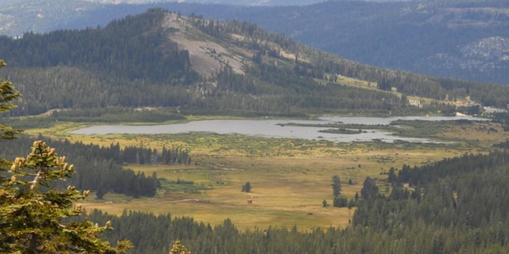 Van Norden Meadow along Old Highway 40 on Donner Summit – Bill Oudegeest