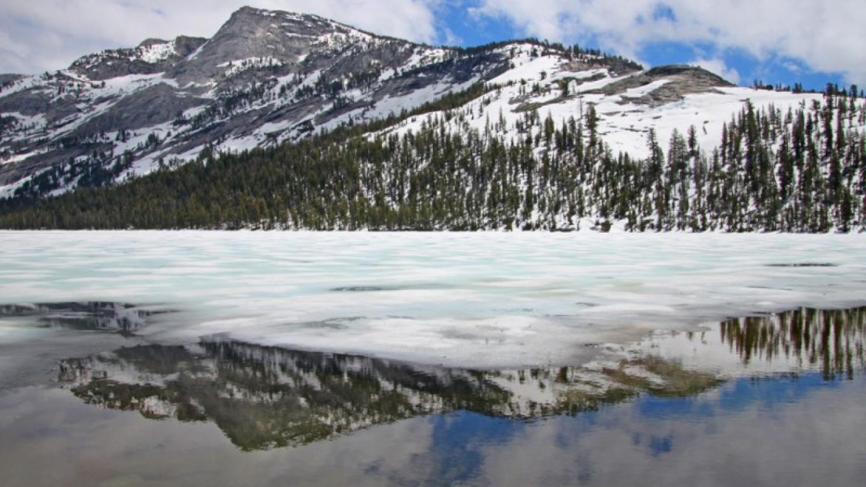 Tenaya Lake looking South – Ray Anderson