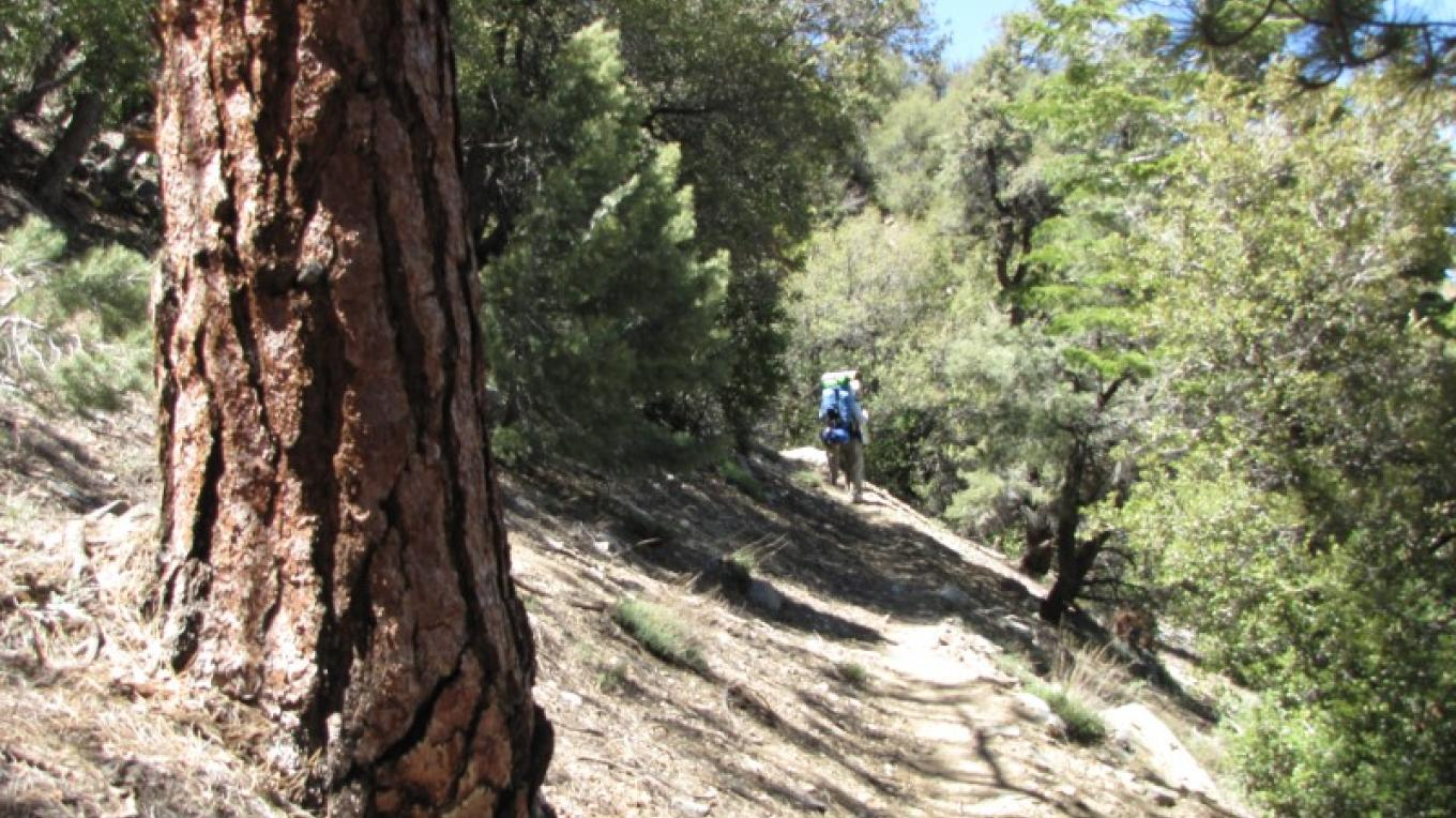 Pacific Crest Trail - upper Indian Wells Canyon – Shelley Ellis