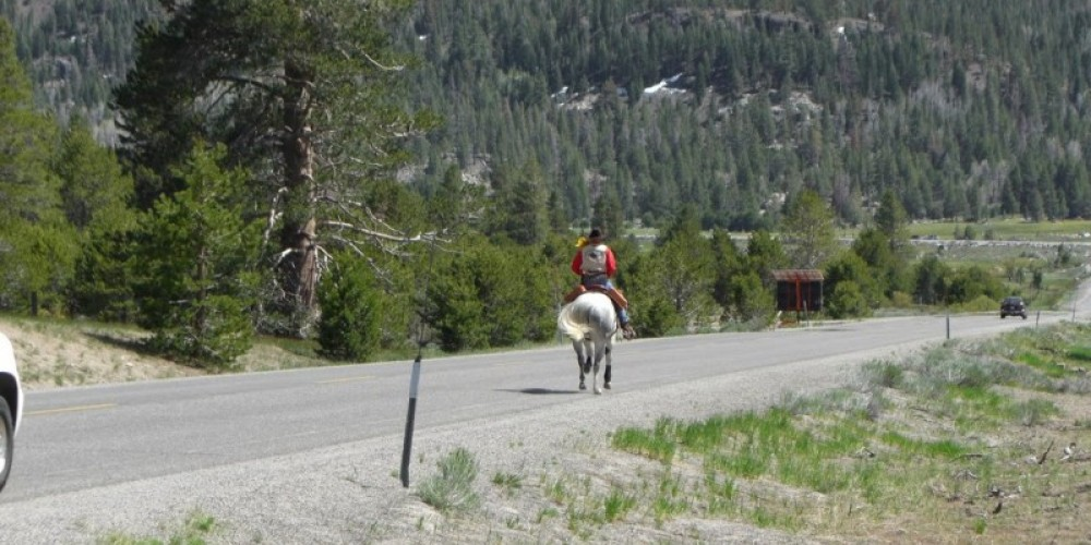 Ron coming down from Luther Pass – XP Member