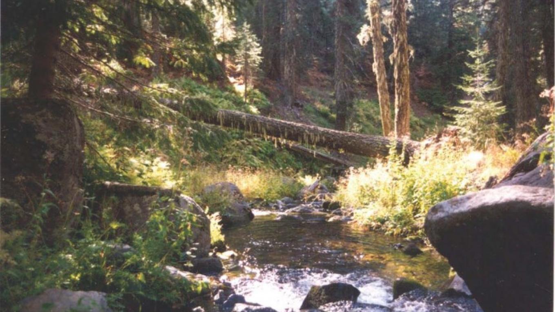 Creek in Latour.