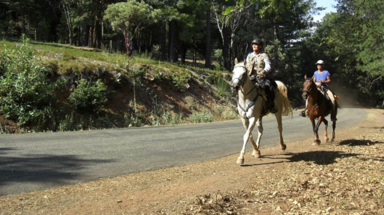 Tevis Riders – Debbie Griffin
