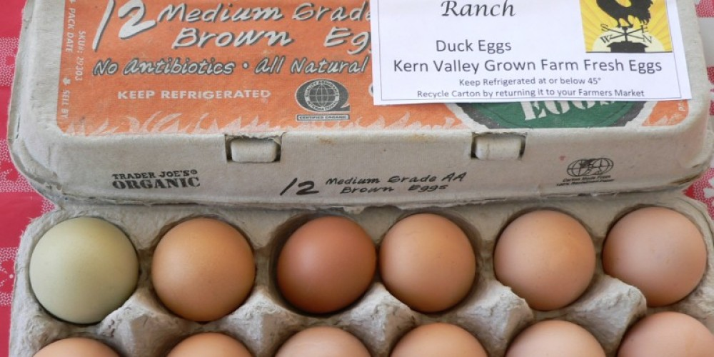 Never B Done Ranch duck eggs for sale. – David Dills