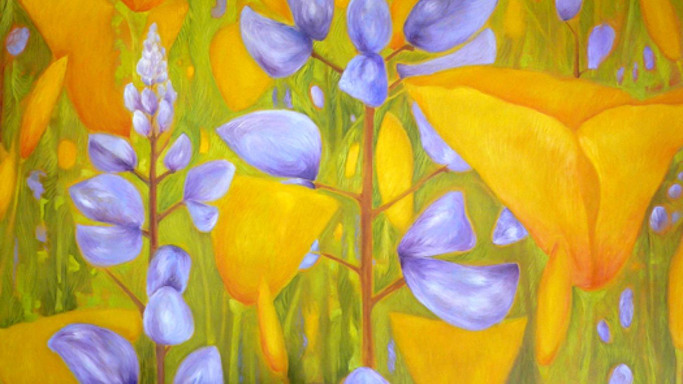 Poppies and Lupines by Wendy McKellar. – Nadi Spencer