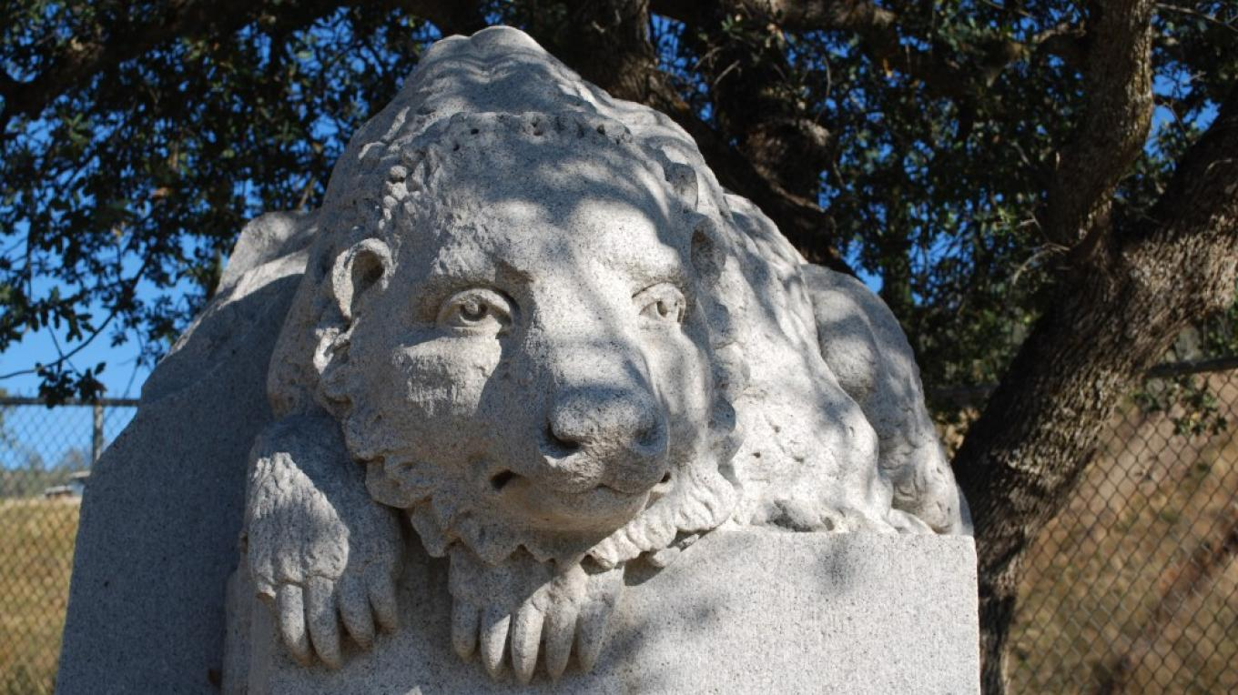 One of a pair of bears at the gate to the quarry. These bears survived the San Francisco earthquake and came home. – Lynn Northrop