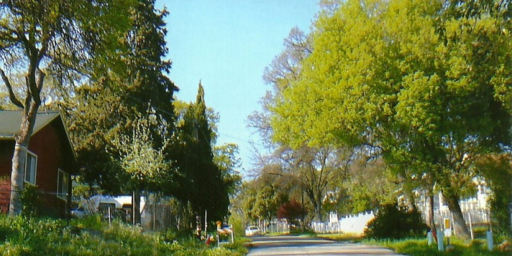 Wilson road New Auberry. does not resemble boom town of thousands in 1920's – Susan Leeper