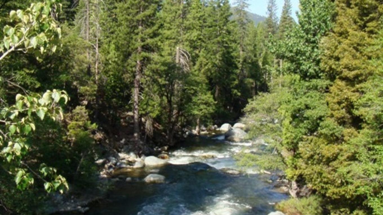 Yuba River – R. Hertzberg