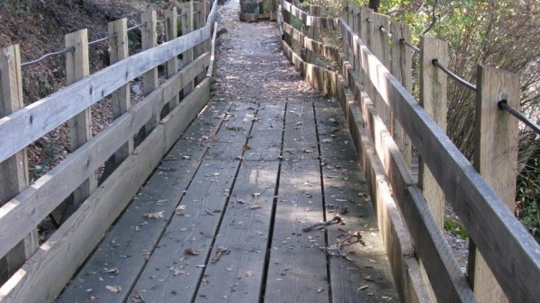 Flume trail – Linda Chaplin