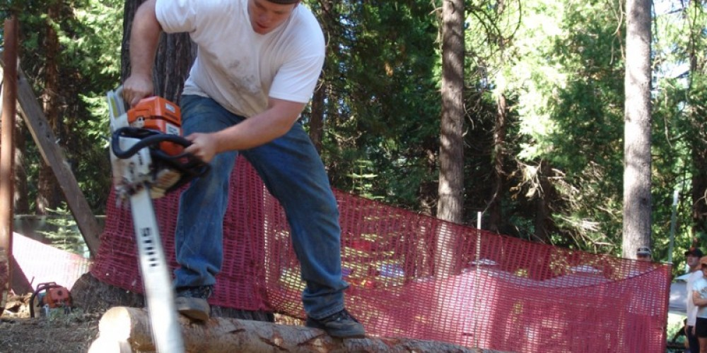 Out on a limb – Sierra Nevada Logging Museum