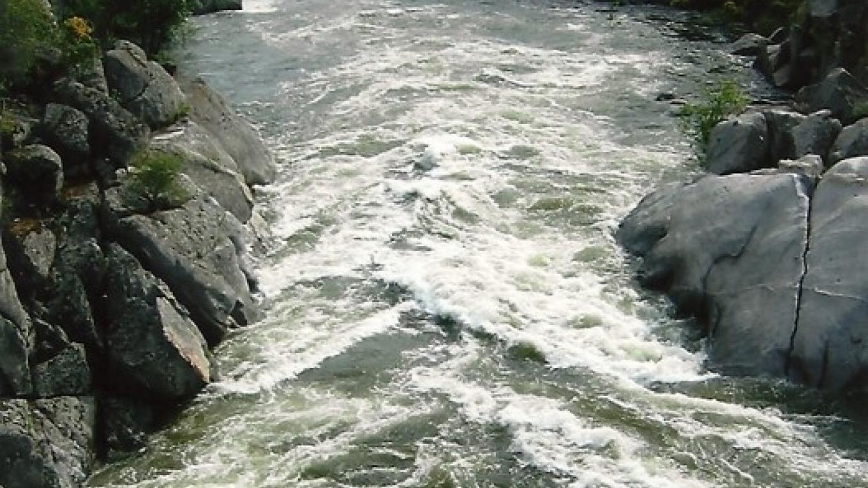 The San Joaquin River – Sue Leeper