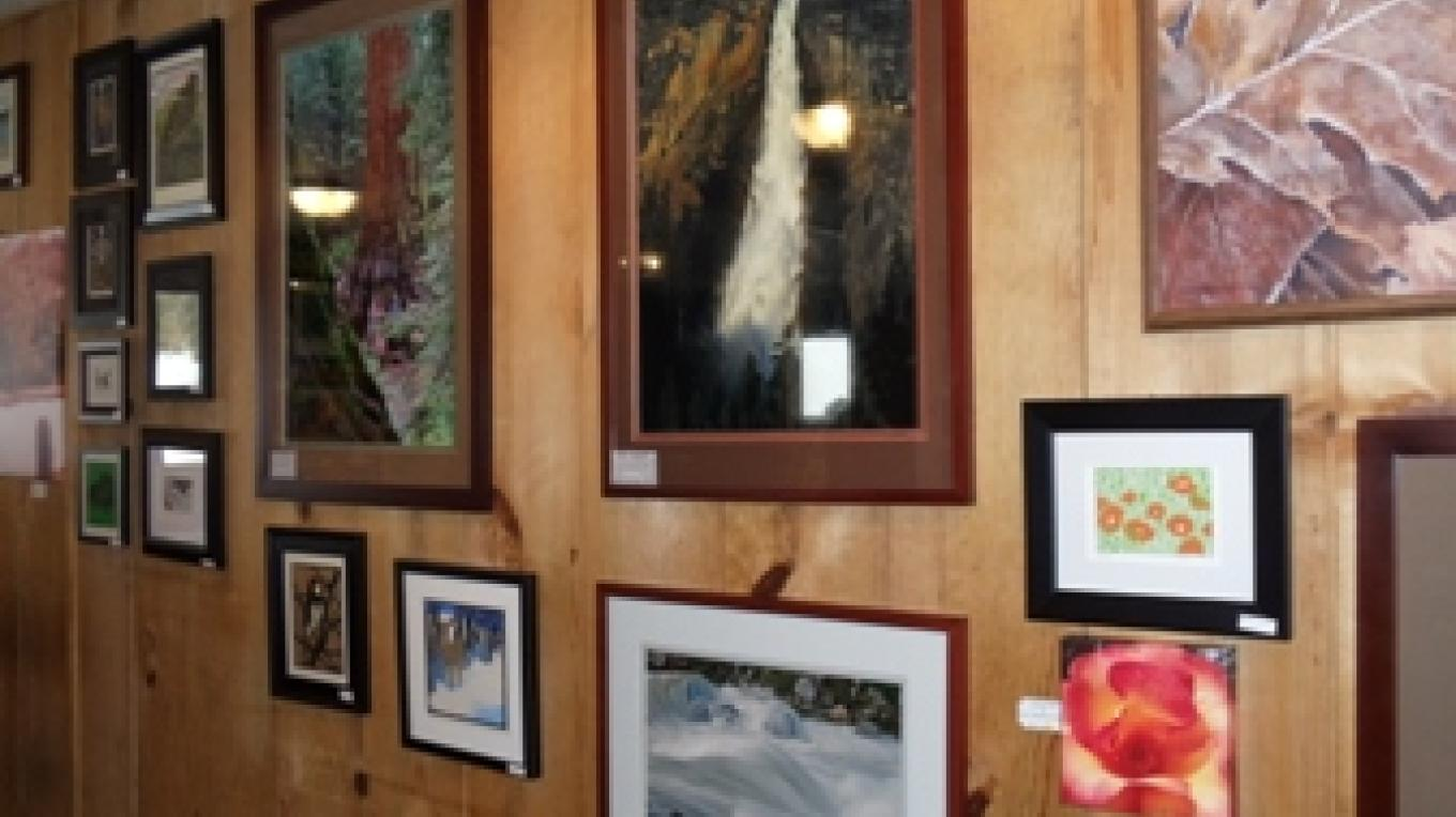 partial gallery view – Darlene Meissner