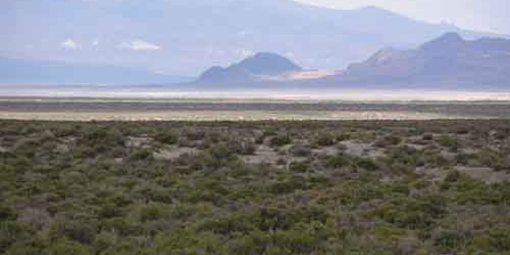 In the distance you can see Black Rock Point with the Calico Hills in the background.  In 1852, the Nobles Trail branched off the Applegate Trail at Black Rock Springs at Marker A-14.  When water was discovered at Trego Hot S – Bob Black