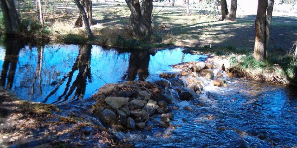 Build a dam in Independence Creek – J Stroh