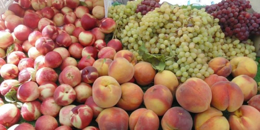 Summer fruits at Pine Grove Farmers Market – Amador County Farmers Market Association