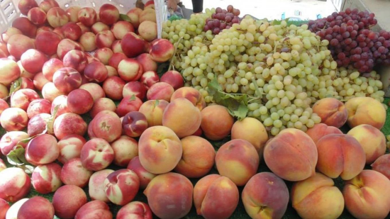 Summer fruits at Pine Grove Farmers Market – Amador County Farmers Market Association