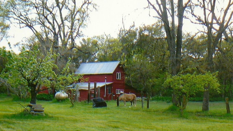 Daddy Joe's barn bungalow rental SJ&E road – Susan Leeper