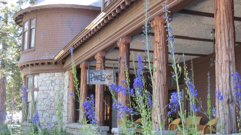 Pine Lodge, porch – Susan Grove