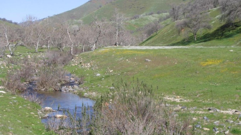 Dry Creek – Mahalia LoMele