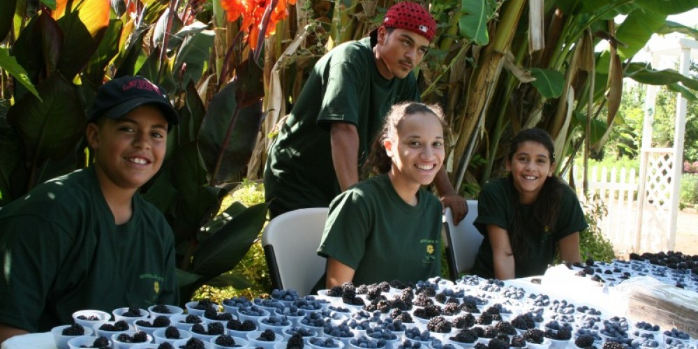 Woodlake Pride Youth volunteers prepare to give out blueberry and blackberry samples to visitors. – M. Jimenez