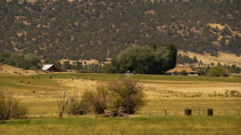 Willow Creek Ranch – Lorissa Soriano
